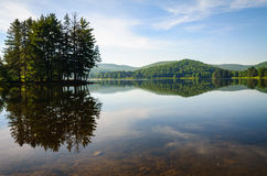 Allegany State Park Stock Image