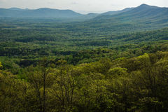 Allegheny-Berge Stockbild