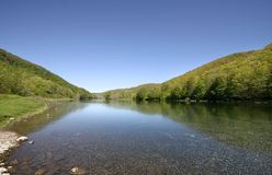 Allegheny National Forest Stock Image