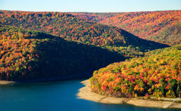 Allegheny National Forest Stock Photo