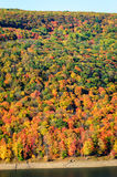Allegheny National Forest Royalty Free Stock Photos