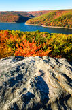 Allegheny National Forest Royalty Free Stock Image