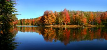 Allegheny state park Royalty Free Stock Photos