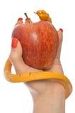 Allegorie der Versuchung von Adam und von Eve Stockfoto