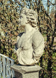 The Allegory of May bust in the Catherine Park in Tsarskoye Selo. Royalty Free Stock Images