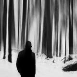 Allein in der Winterzeit Wintergedächtnisse Stockfotografie