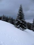Allein im Winter Lizenzfreies Stockfoto