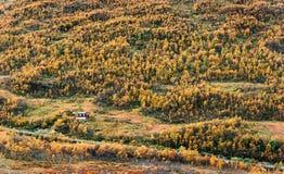 Allein rotes Haus unter Herbstbäumen stockfotos