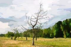 Allein sterbender Baum. Lizenzfreies Stockbild
