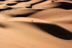 Alleine in der Wüste Lizenzfreies Stockfoto