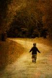 Alleine im Wald stockbild