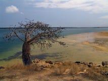 Alleine mit dem Ozean Stockfotos