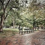 Alleine am Park Lizenzfreie Stockfotos