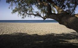 Alleiner Strand in der Südküste von Creta Lizenzfreie Stockfotografie
