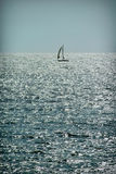 Alleinsegelschiff auf Wasser im guten Wetter yachting Lizenzfreies Stockbild