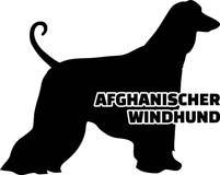 Allemand de mot de silhouette de lévrier afghan vrai Images libres de droits