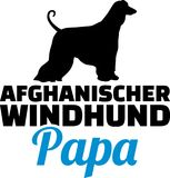 Allemand de silhouette de papa de lévrier afghan Photo stock