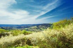 Allemand Eifel de paysage photos libres de droits