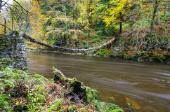 Allen Banks suspension footbridge Stock Images
