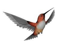 Allen hummingbird - 3D render. Emerald hummingbird flying  in white background - 3D render Stock Photo