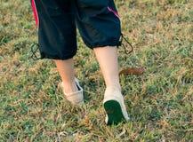 allenamento di camminata Fotografie Stock Libere da Diritti
