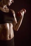 Allenamento di forma fisica Immagini Stock