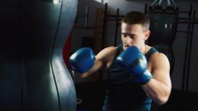 Allenamento di pugilato: preparandosi con un punching ball stock footage