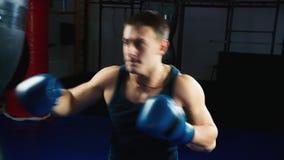 Allenamento di pugilato: Pugilato atletico dell'uomo archivi video