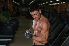 Allenamento muscolare abbronzato dell'uomo con le teste di legno in palestra Fotografia Stock