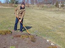 Allentamento del suolo dal rastrello Fotografia Stock