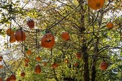 ALLENTOWN, PA - 10月22日:在Dorney公园的万圣夜装饰在Allentown,宾夕法尼亚 免版税库存图片