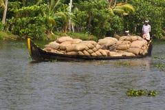 Allepey, †«31-ое марта 2015 Кералы, Индии: Индийский dwell перехода человека с рисом для шлюпок каное подпоров в положении стоковая фотография rf