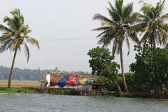 Allepey city on water. Backwater, rice plantation, coconuts palm mango tree. River landscape. Allepey city on water. Backwaters, rice plantation, coconuts palm stock photo