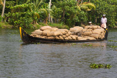 Allepey, Kerala, India – March 31, 2015: Indian man transport dwell with rice for boats. backwaters canoe in state. Allepey, Kerala, India March 31, 2015 Royalty Free Stock Photography