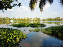 Alleppey, India stock image