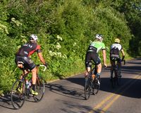 Aller aux cyclistes de route de Sun Photographie stock libre de droits