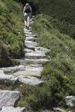 Aller sur la crête en montagnes Image libre de droits