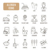 Allergen icons. Set of vector pictogram Royalty Free Stock Photography