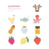 Allergens projekta płaskie ikony ustawiać Fotografia Royalty Free