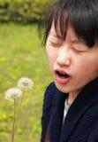 Allergia Fotografia Stock