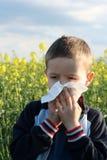 Allergia Immagine Stock
