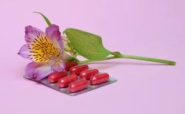 allergia Alstroemeria e compresse del fiore dalle allergie Fotografia Stock