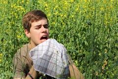 Allergia del polline Fotografia Stock Libera da Diritti