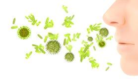 Allergia del polline/infezione di influenza febbre di fieno Fotografia Stock