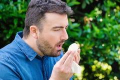 Allergia del polline nel concetto di primavera Uomo che starnutisce in un tessuto Fotografia Stock