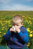 Allergia della primavera fuori Fotografie Stock Libere da Diritti