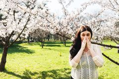 Allergia della primavera, polline Immagine Stock