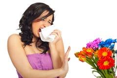 Allergia della sorgente Fotografie Stock