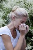 Allergia di stagione Immagini Stock
