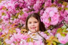 Allergibot Barnet tycker om liv utan allergi Sniffa blommor Bli av med den s?songsbetonade allergin Tycka om för flicka som är bl arkivfoto